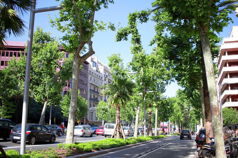 www.plaamkaa.pl_barcelona (6)