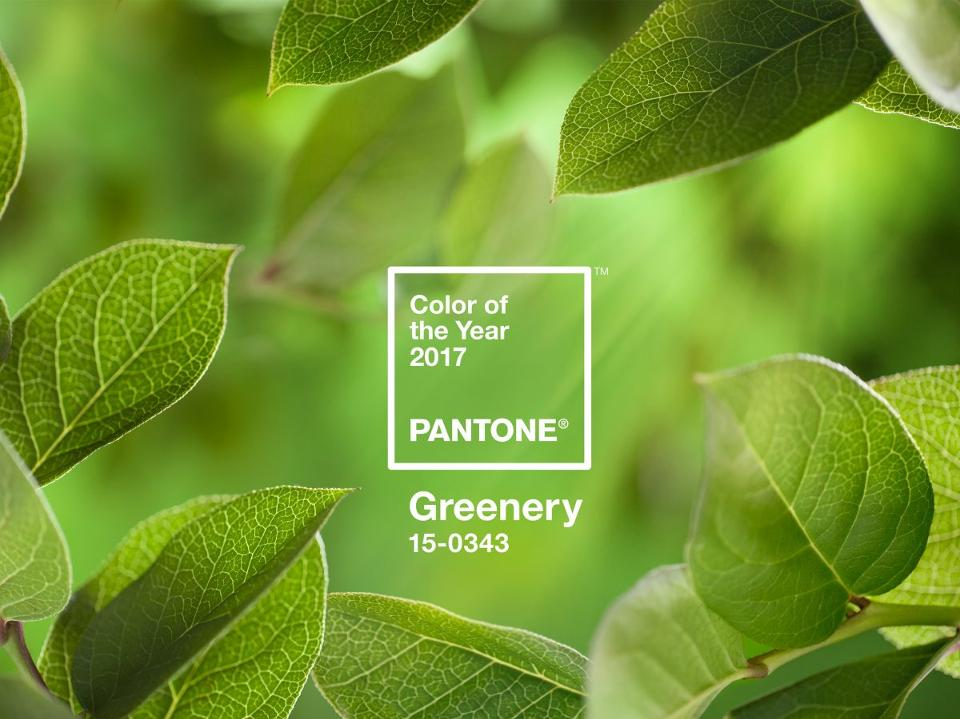 kolor roku 2017 greenery