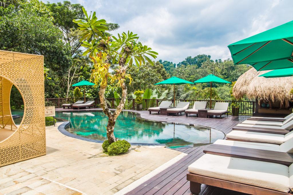 hotel w dżungli bali